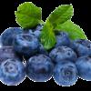 Fruttagel Mirtilli